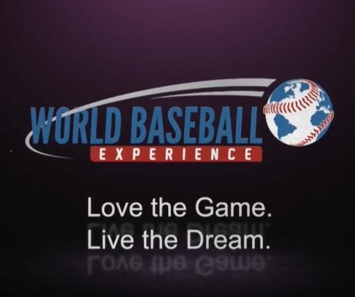 World Baseball Experience