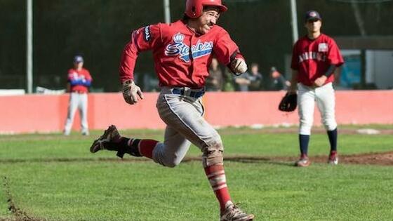 Baseball jobs overseas david carles germany australia 2018 2018 sciox Images